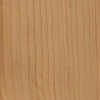 Cedar-of Lebanon (sealed)