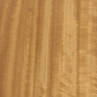 Ceylon Satinwood (sealed)