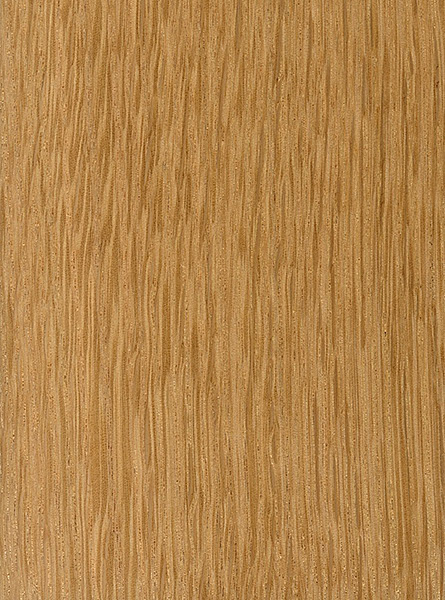 chestnut oak the wood database lumber identification (hardwood)