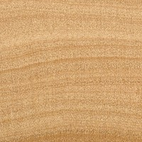 Lemonwood (endgrain 10x)