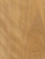 Lemonwood (sealed)