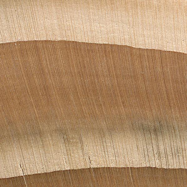 Eastern Hemlock The Wood Database Lumber Identification Softwood