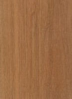 Hophornbeam (Ostrya virginiana)