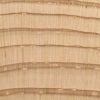 Eastern White Pine (endgrain 10x)