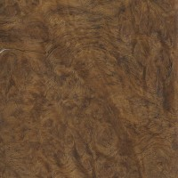 English Oak (burl veneer)