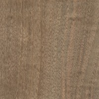 English Walnut (sanded)