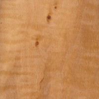 European Alder (sealed)