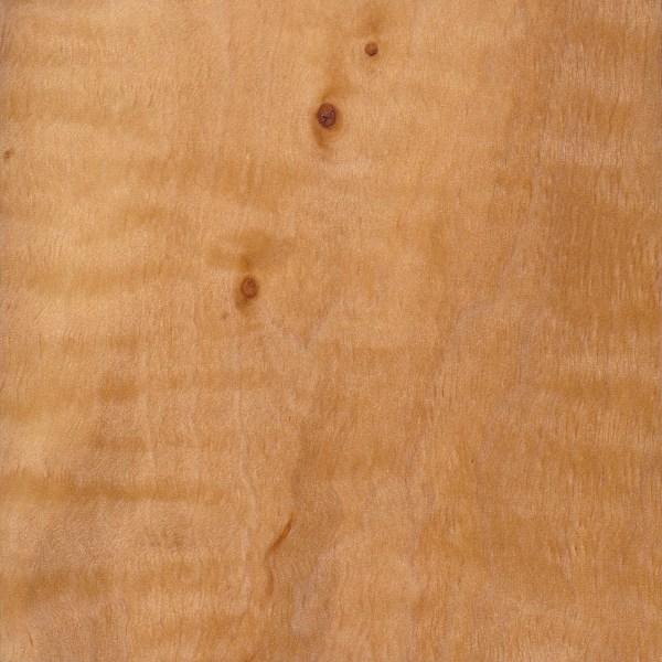 European Alder The Wood Database Lumber Identification Hardwood