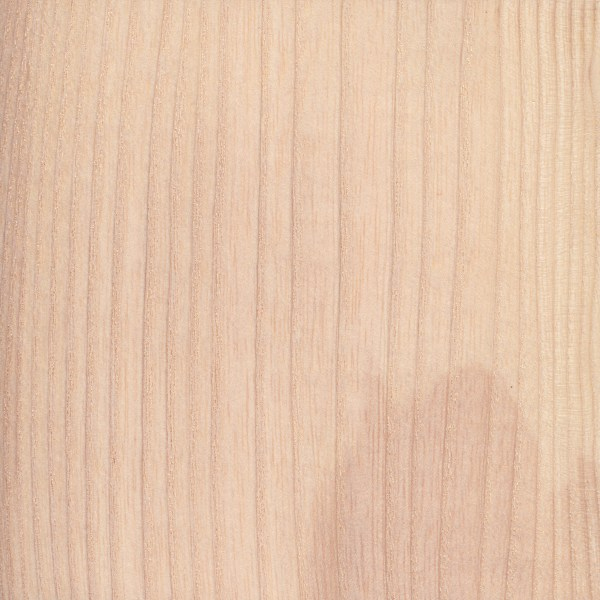 European Ash The Wood Database Lumber Identification