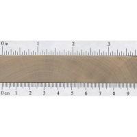 Field Maple (endgrain)