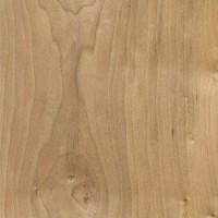 Field Maple (sealed)
