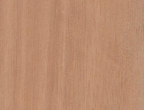 Dahoma The Wood Database Lumber Identification Hardwood
