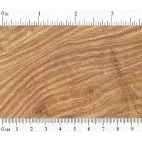 Honey Locust (endgrain)