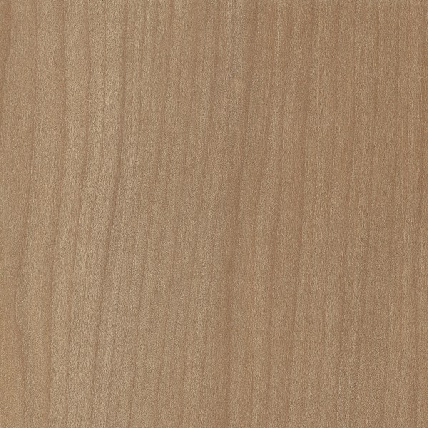 Agathis Sawn Timber ~ Kauri the wood database lumber identification softwood