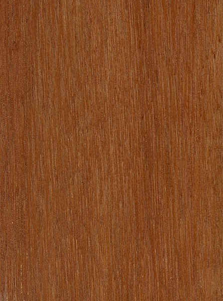 Keruing The Wood Database Lumber Identification Hardwood