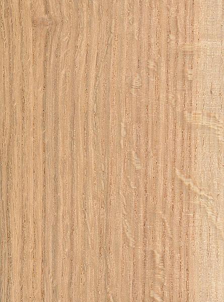 Laurel Oak The Wood Database Lumber Identification
