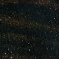 Macassar Ebony (endgrain 10x)
