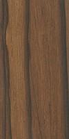 Madagascar Rosewood (Dalbergia baronii)