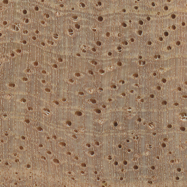 Mango The Wood Database Lumber Identification Hardwood