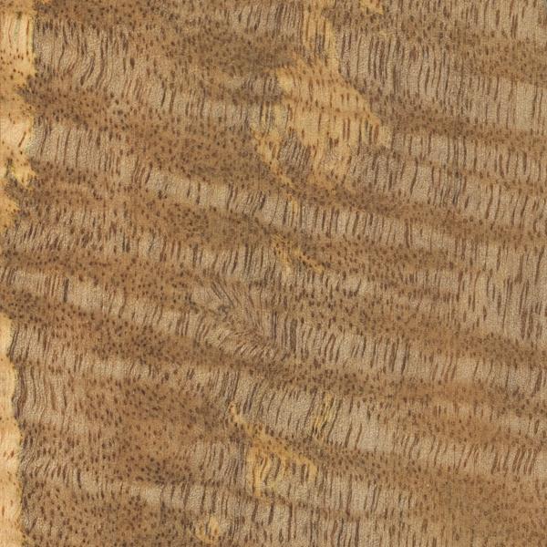 Mango The Wood Database Lumber Identification Hardwood
