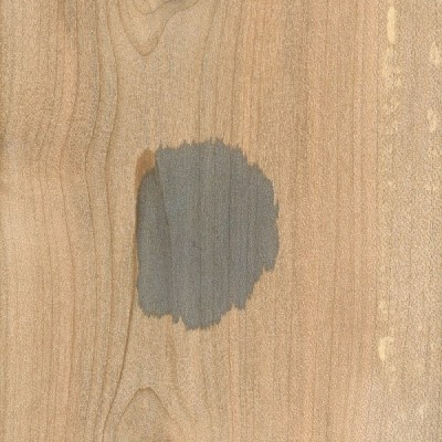 Red Maple (dark blue)
