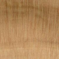 Mexican Cypress (endgrain 10x)