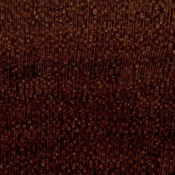 Mopane The Wood Database Lumber Identification Hardwood
