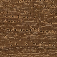 Narra (endgrain 10x)