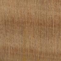 Norfolk Island Pine (endgrain 10x)