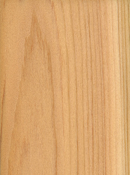 Northern White Cedar The Wood Database Lumber