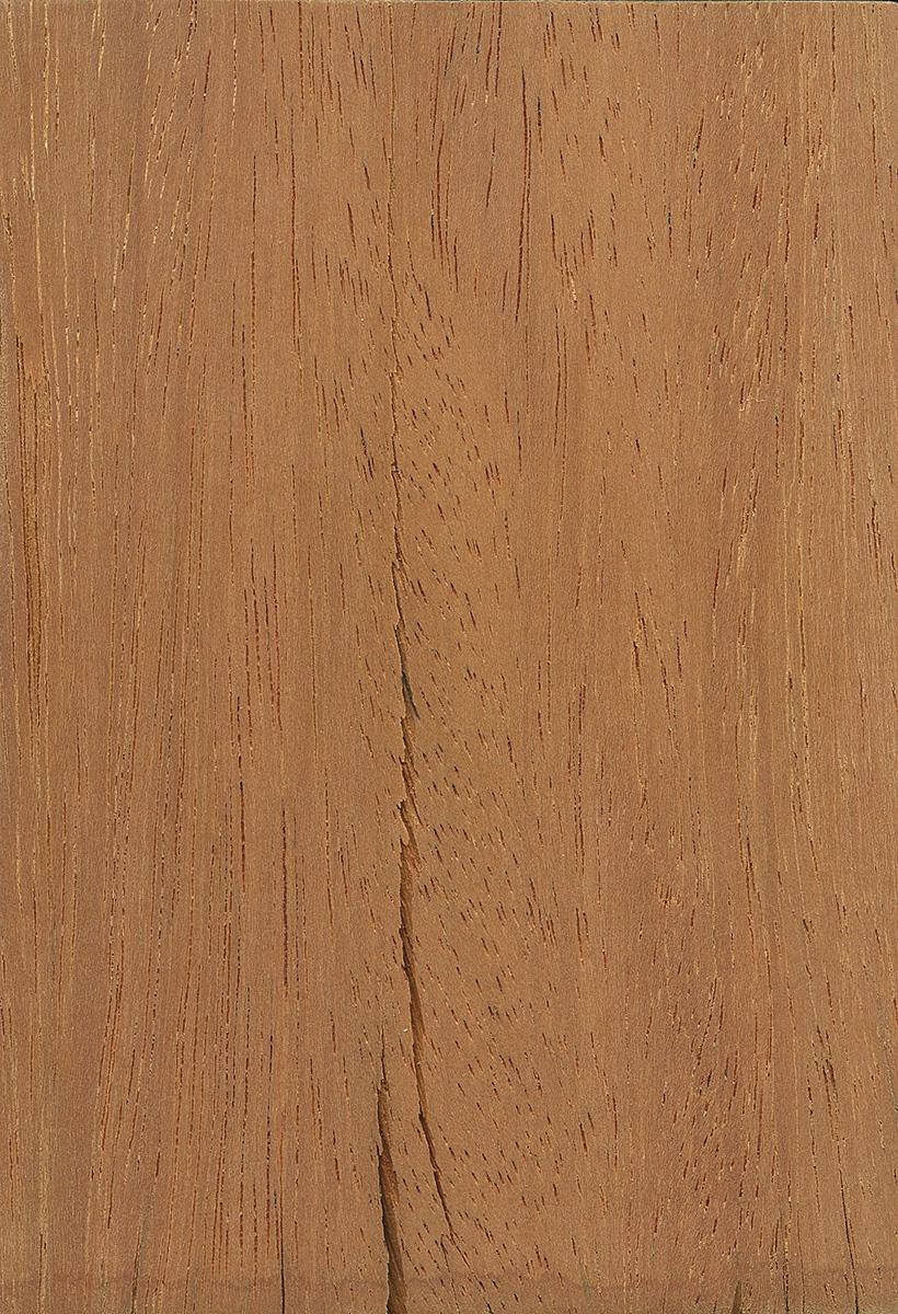 Opepe The Wood Database Lumber Identification Hardwood
