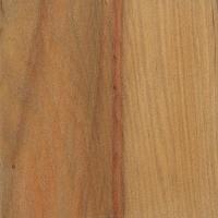 Parana Pine (sealed)