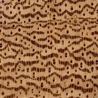 Partridgewood (endgrain 10x)
