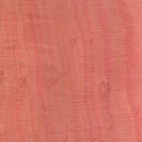 Pink Ivory (Berchemia zeyheri)