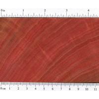Pink Ivory (endgrain)