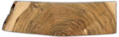 This endgrain view of Plum exhibits cupping. The board was initially cut flat, with the top and bottom originally being parallel. Further machining will be necessary to ensure the board is flat and square.