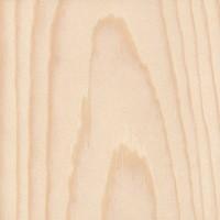 Ponderosa Pine (Pinus ponderosa)