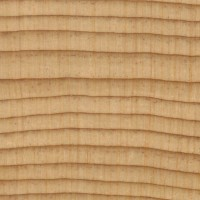 Port Orford Cedar (endgrain 10x)