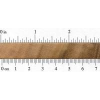 Queensland Maple (endgrain)