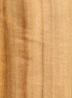 Queensland Maple (sealed)