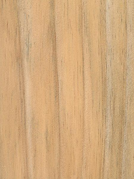 Radiata Pine The Wood Database Lumber Identification