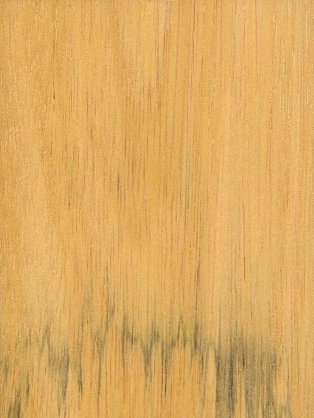 Asian ramon hardwood, dad xxx videos