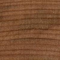 Red Mallee (endgrain 10x)