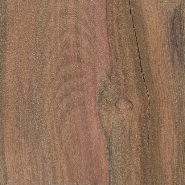 Red Mallee | The Wood Database - Lumber Identification