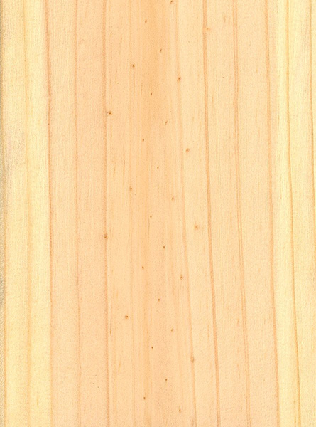 Red Pine The Wood Database Lumber Identification