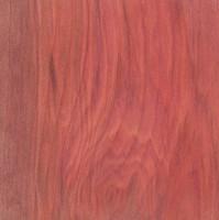 Redheart (Erythroxylon mexicanum)