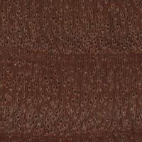 River Red Gum (endgrain 10x)
