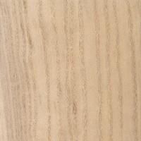 Paulownia (Paulownia tomentosa)