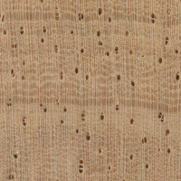 Rubberwood (endgrain 10x)