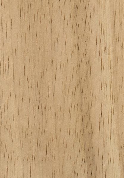 Rubberwood The Wood Database Lumber Identification